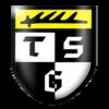 Logo: TSG Balingen